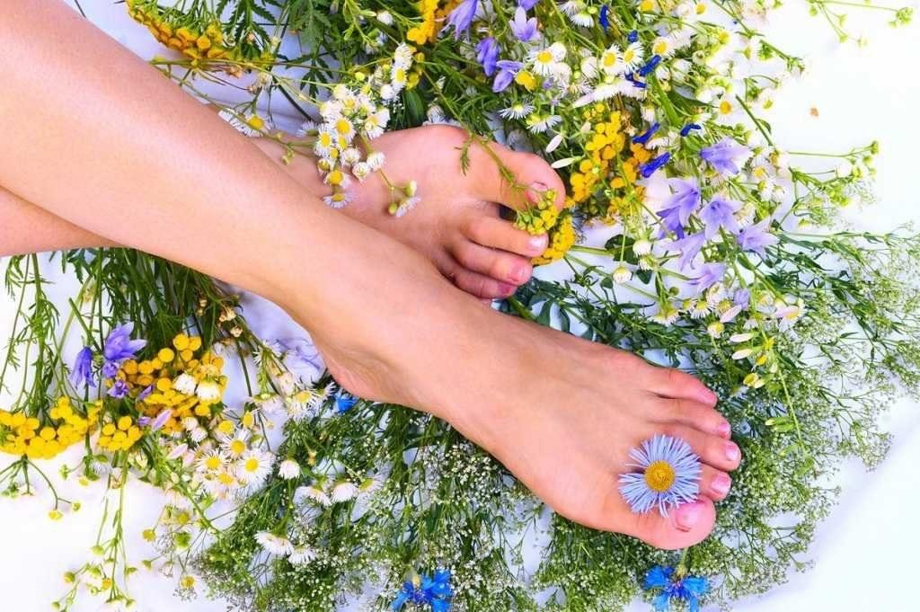 Травы и ноги
